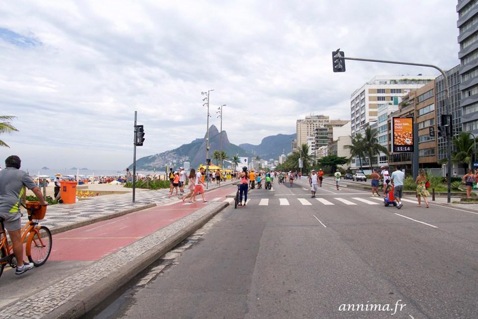 Rio-conseils-1