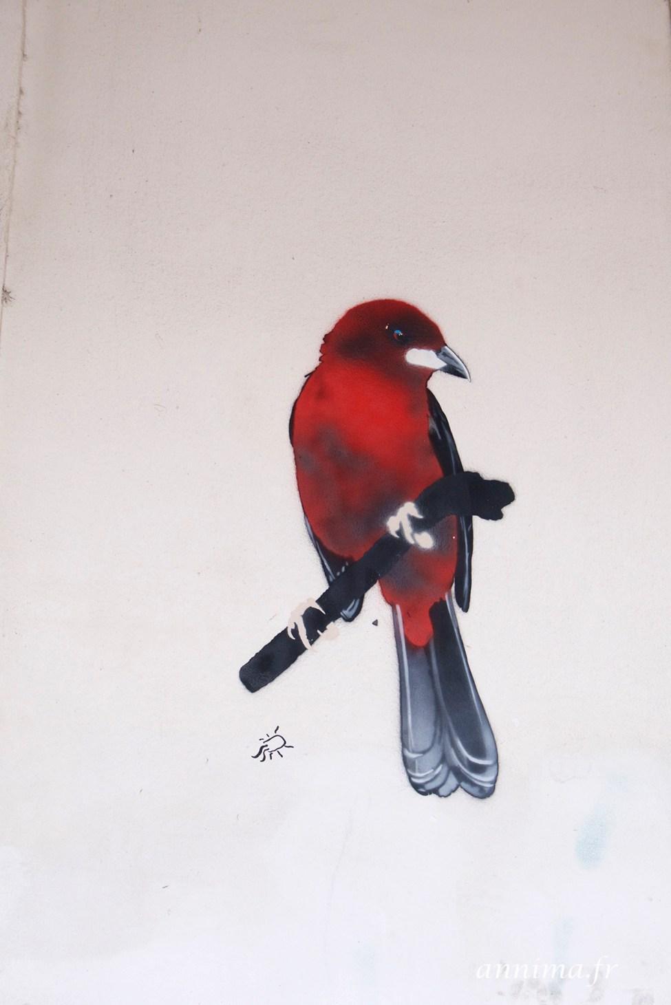 street art graph Rio 11