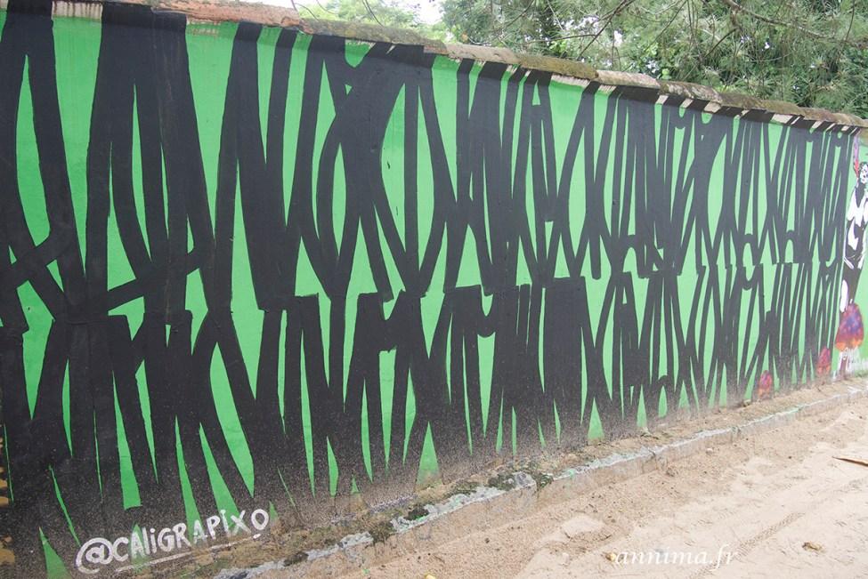 street art graph Rio 22