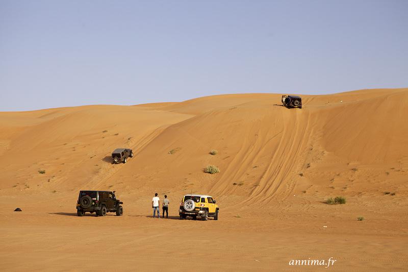 Les dunes du désert de Wahiba Sands