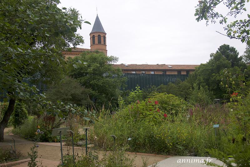 Pousser les portes de la serre du Muséum de Toulouse.