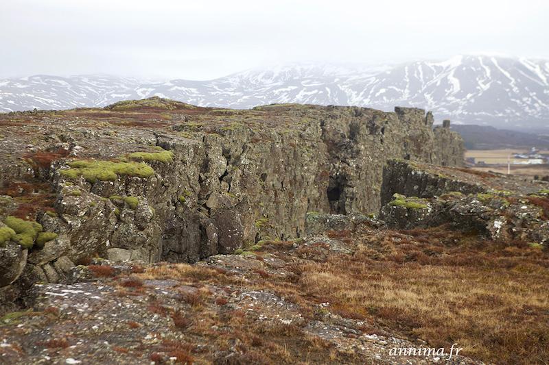 La douceur des couleurs du parc de Þingvellir