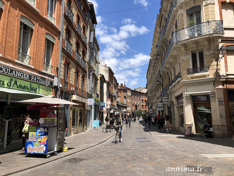 Vieux Toulouse