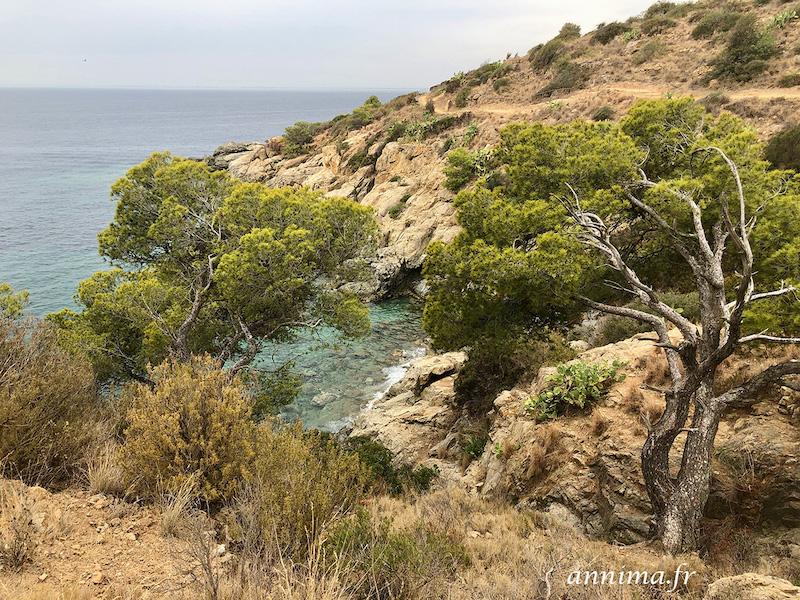 Le chemin de ronde du Cap de Creus
