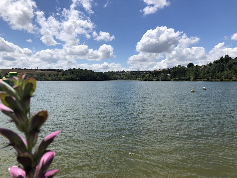 Balades près de Toulouse le lac de la Thésauque.