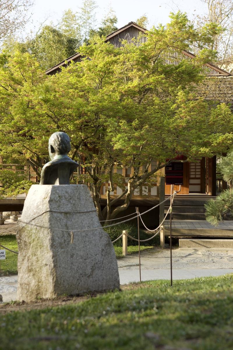 Un petit matin au jardin Japonais