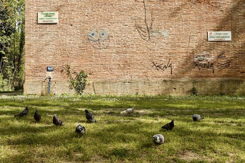 Le parc de la poudrerie jardin toulousain à découvrir