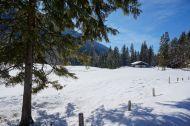Winter wonderland along the German Alpine Road (Deutsche Alpenstrasse)