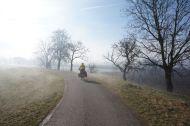Riding through the mystically foggy morning