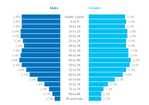 Population pyramids are a back-to-back histogram for comparing two categories at once, like the distribution of males and females across different age groups.