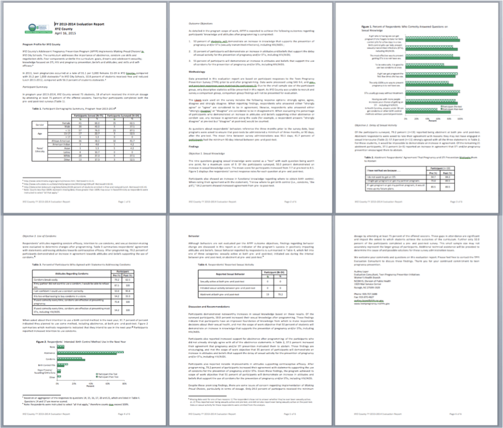 I was sending my sites six pages of mind-numbingly boring text, accompanied by a few yawn-worthy tables and graphs.