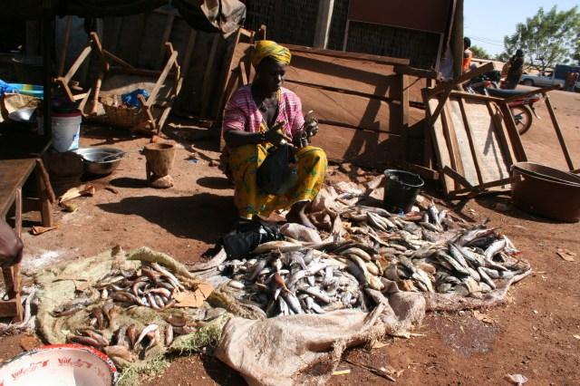 Mali 2010 (143)