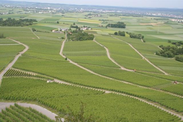 Grossgartach 2009 117