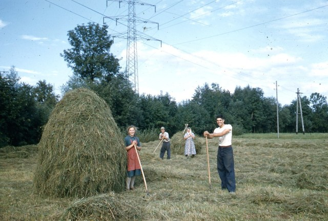 German Relatives 1956 1