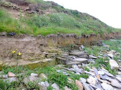 The site was exposed during winter storms and now it erodes further into the dunes