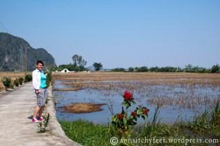 Wietnam_NinhBinh788_m