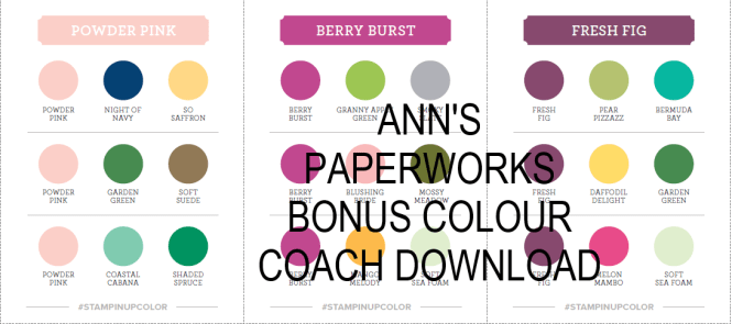 Stampin' Up! Colour Coach Bonus Download, Ann's PaperWorks
