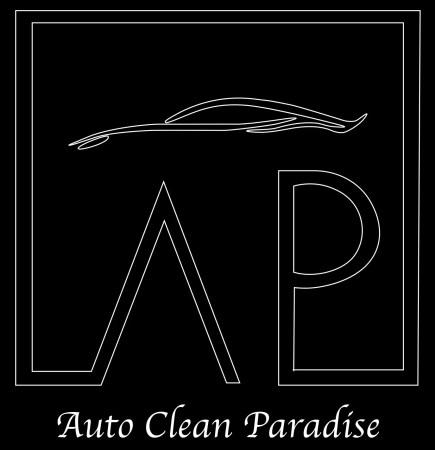 logo auto clean paradise 78