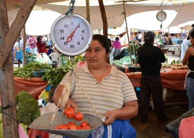 LINK methodology: Four years successfully linking farmers to markets
