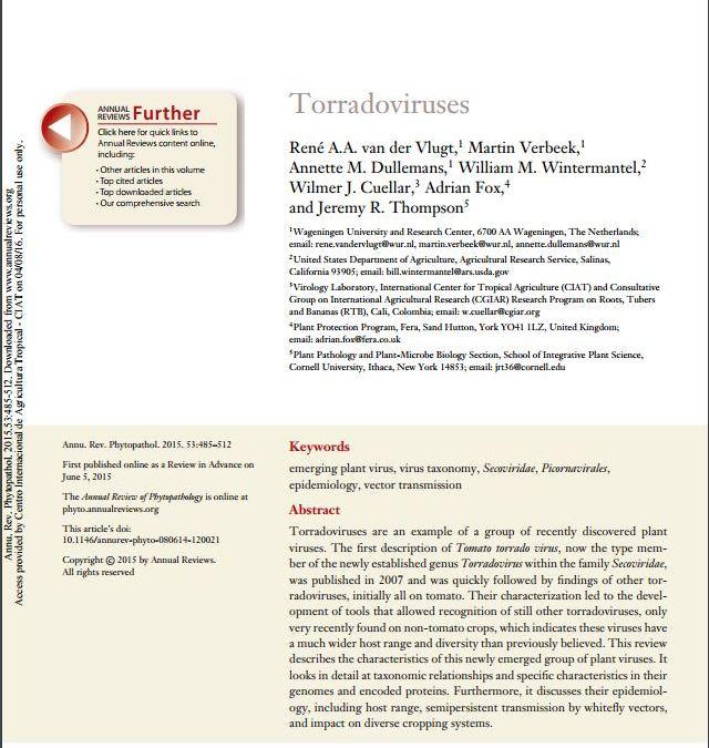 Torradoviruses