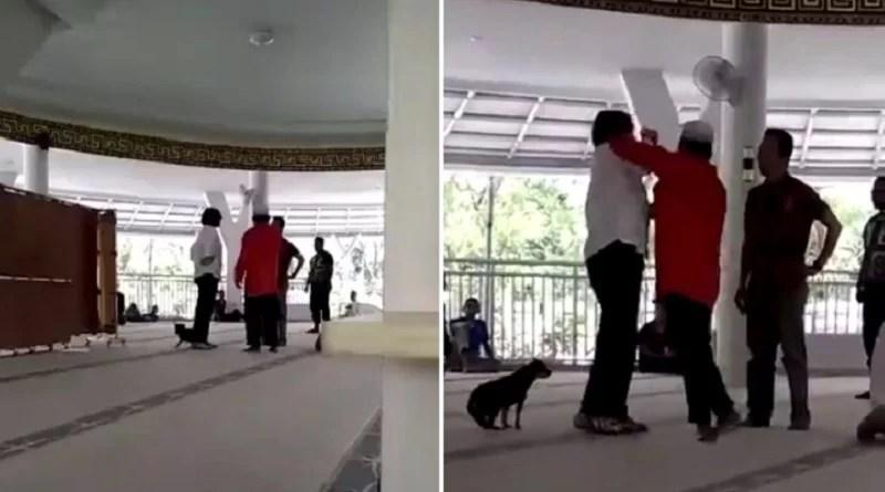 Gara-Gara Anjing