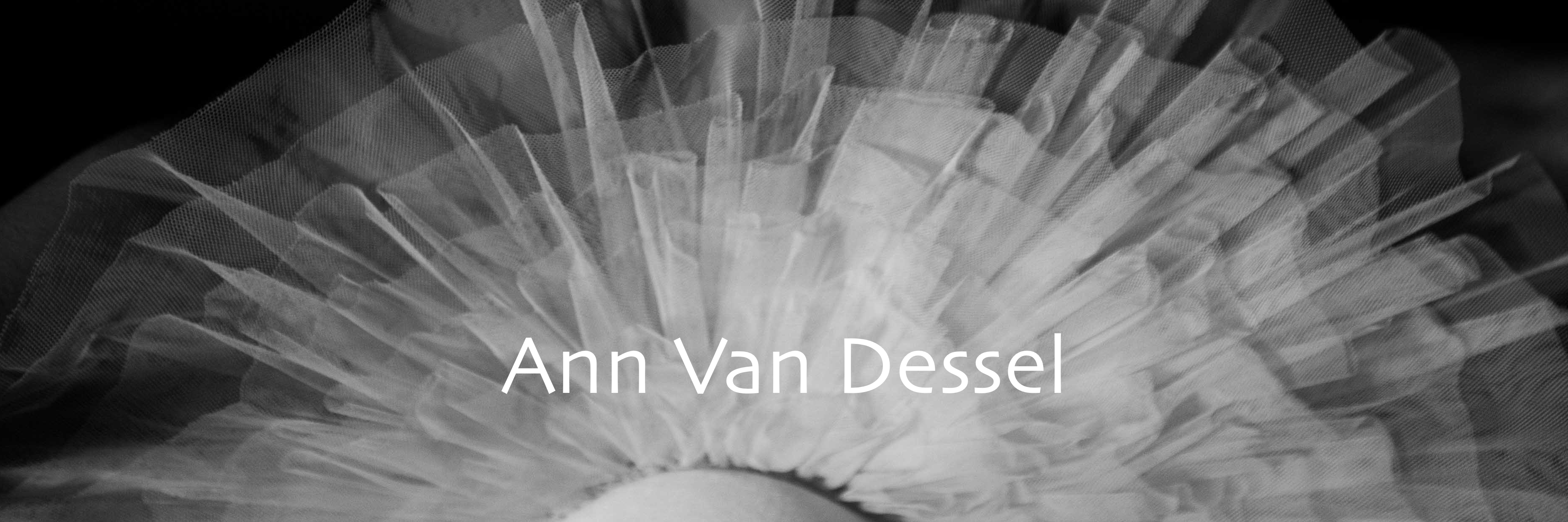 Ann Van Dessel
