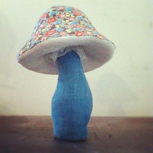 calico mushroom