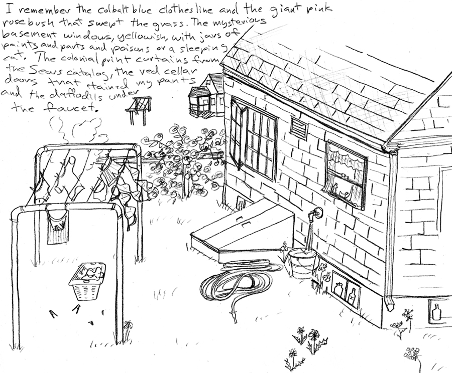 sketchbook the back of the house ann wood handmade General Anatomy of a Cat sketchbook the back of the house