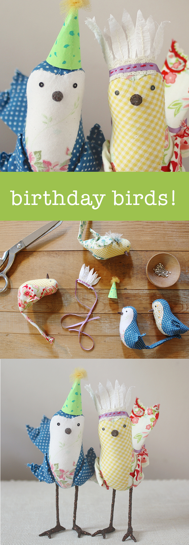 birthday party birds