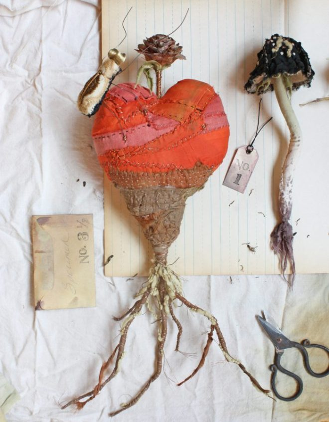 tif: specimens