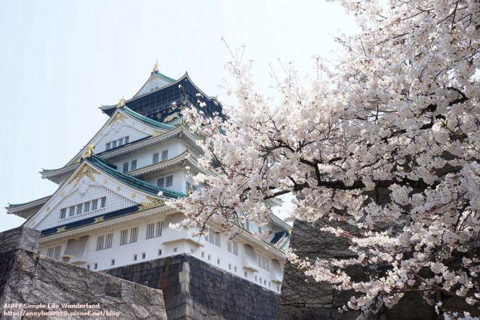 【日本】2020京都、大阪賞櫻攻略 ♥ 網友激推十大賞櫻景點