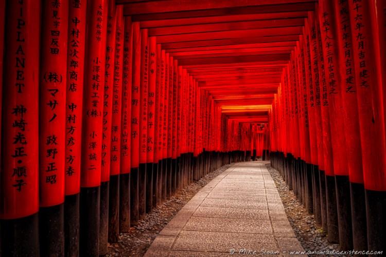 Thousands of tori gates at Fushimi Inari Shrine - so mesmerising!