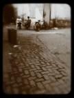 Morning chat, Pali Village