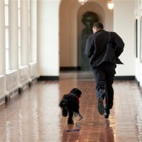 Running to standstill