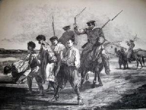 Tarani batuti 1907