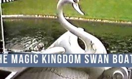 Do You Remember the Magic Kingdom Swan Boats?