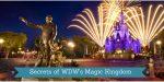 Shhhh! It's a Secret! Secrets of WDW's Magic Kingdom