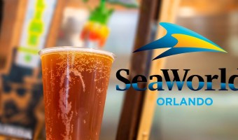 Got Beer? SeaWorld Orlando Giving Free Beer to Park Visitors