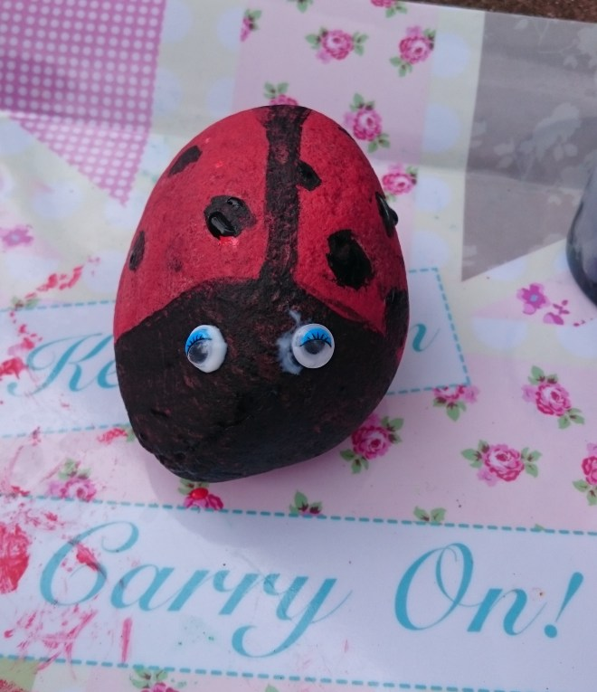 painted rock ladybird