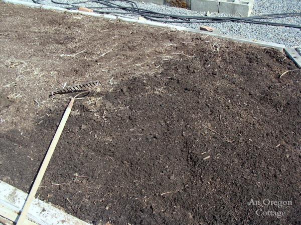 Planting a garden bed-No-Till Vegetable Bed- spreding compost