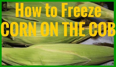 How to Freeze Corn on the Cob at Homemade Food Junkie