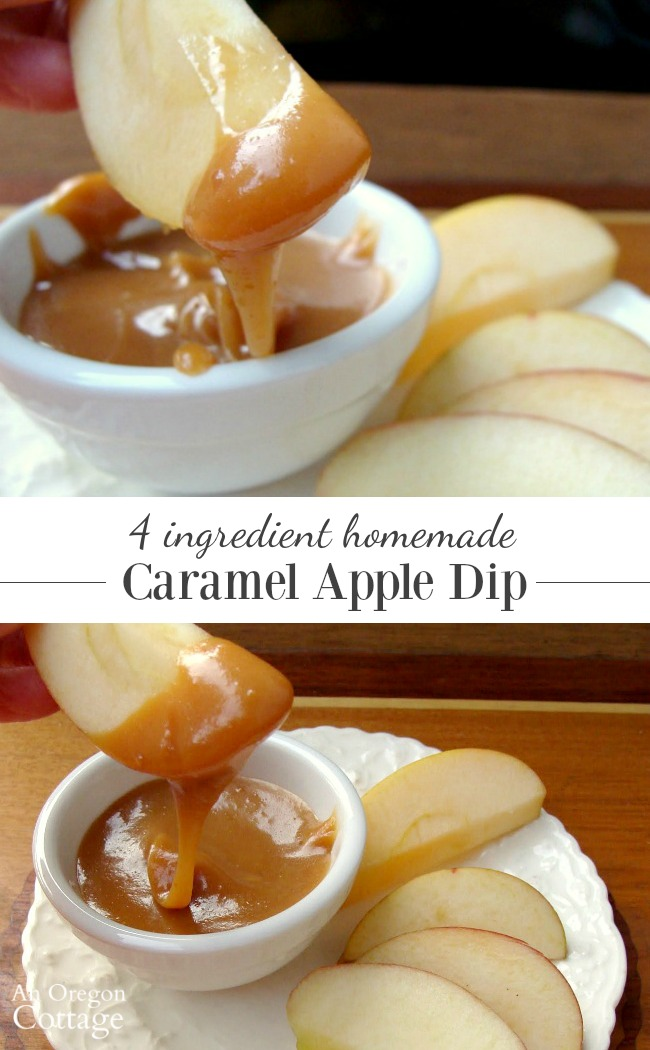 This recipe for homemade caramel apple dip uses just 4 ingredients and takes 15 minutes. Make a fall family apple tasting tradition with this dip and 3-4 different apple varieties- our family looks forward to this every year!