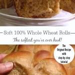 The Original Soft 100% Whole Wheat Dinner Rolls