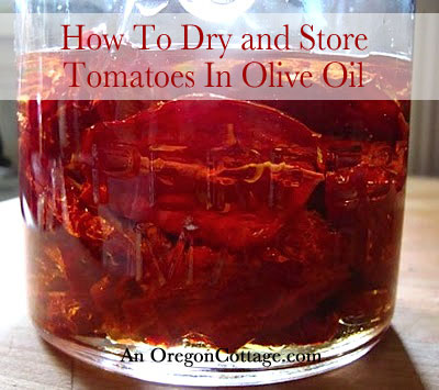 Drying Tomatoes and Storing in Olive Oil
