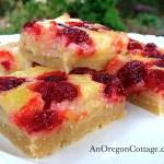 raspberry-lemon-bars