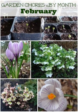 Garden Chores By Month: February