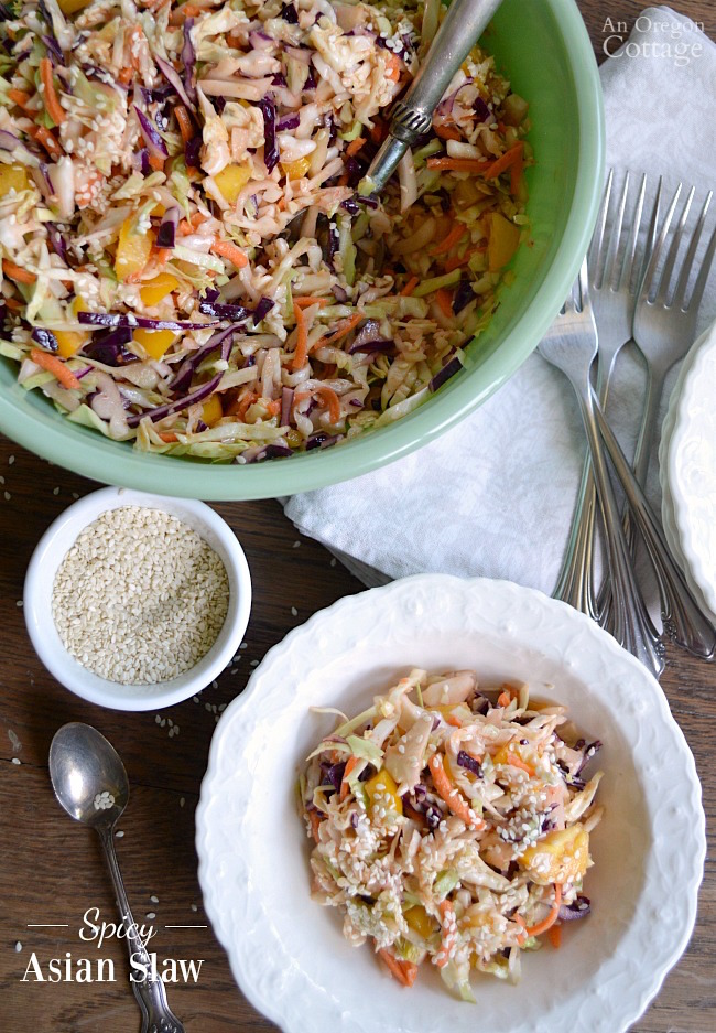 This simple, slightly spicy Asian slaw takes just a few minutes to put together with pantry and fridge ingredients. It's the perfect accompaniment to grilled meats and Asian-flavored dishes - and it disappears quickly at potlucks!