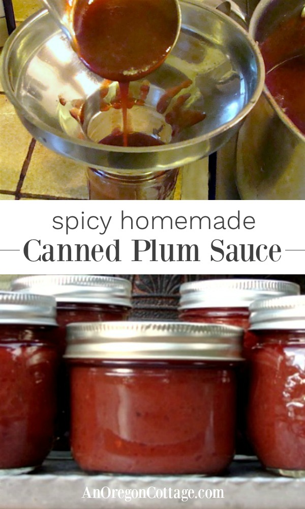Canned Plum Sauce-make your own homemade plum sauce to add to your favorite Asian dish.