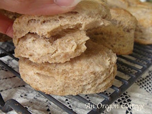 Flaky 100% Whole Wheat Flaky Biscuits