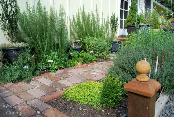 DIY Backyard Makeover-Herb Garden
